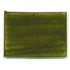 PT123 - Moss Green Transparent Enamel - 50g