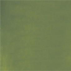 Y2264 - Youghiogheny Plain Opal - Sage